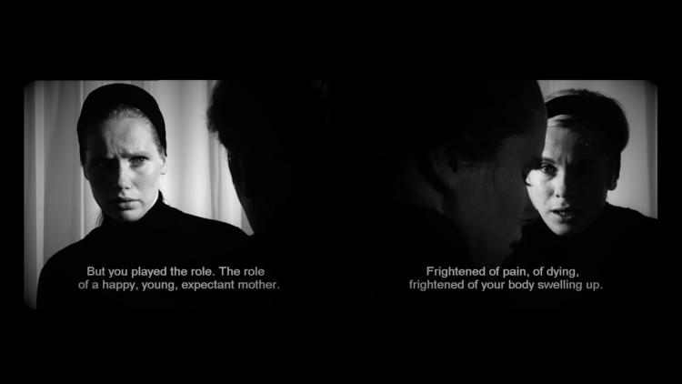 HYB4 Film: Videografický Bergman aneb cinefilie 2.0.