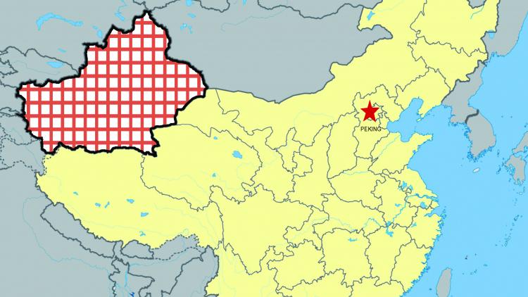 Sin-ťiang/Východní Turkestán v nové éře čínské totality