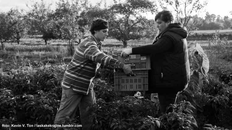 Mrkev v zimě? aneb festival spolupráce mezi zemědělci a spotřebiteli